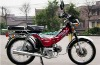 50CC automatic mini dirt bike