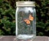 Hotsale Electronic Butterfly In A Jar