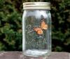 Hotsale Electronic Butterfly In A Jar