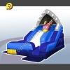 Inflatable Chark Escape Slide