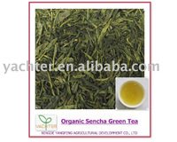organic first grade sencha green tea