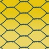 PVC coated poultry wire mesh, PVC coated hexagonal wire netting