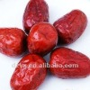 Big Red Jujube