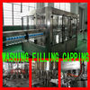 CGF18-18-6 Filling Machine Factory