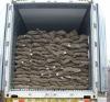 fresh chestnut(2010 new crop)