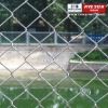 ISO 9001:2008 Farming Chain Link Fence for animals ( Hot Sale)