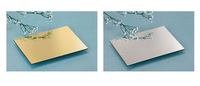 Silver Mirror ACP