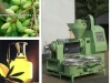 2012 new hot seller olive oil press/oil press with competitive price