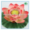 EVA Artificial Flower Floating Lotus with roots
