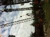 derrick crane ZD10 10ton