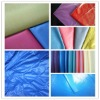 wholesale all kinds of coated nylon taffeta for garment