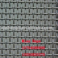 galvanized square wire mesh (21 YEARS FACTORY)