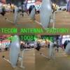 Ku Dish Antenna