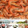Frozen Vanamei Shrimp