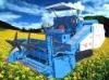 Cole combine harvester