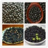 Delicious high quality selected roasted black soybeans