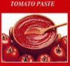 tomato paste in canned