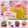 Mother 's day printing ribbon