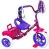 Chils Tricycle with back Tool Case and Mudguard