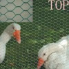 high quality chicken wire/hexagonal wire mesh for animals