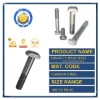 DIN261 T-Head Bolts