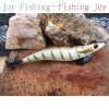 hard plastic lure fishing shrimp jigging