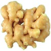fresh ginger 250g and up, fat ginger