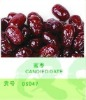 brand food and date fruit price of Honey red Date