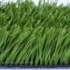 Hight Quality Artificial Grass