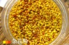 Bee Pollen for Human Being and Animal, Bee