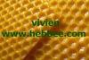 the best honey bee equipment