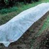 non-woven fabric sheet