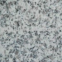 granite paverG602