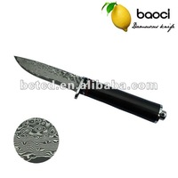 Wholesale! New dasign Damascus knife, Hunting knife