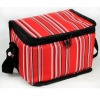 371 Ice Cooler bag