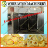 dried fruit making machine 0086135673609924