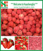 IQF frozen Organic Whole Strawberry