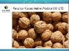 chinese organic walnut and walnut kernel