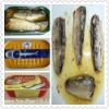 Canned Sardine& Mackerel Canned fish