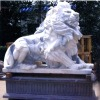 Outdoor stone lion