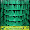 pvc coated welded wire mesh(anping hongyu Hot sale)