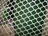 plastic plain netting pe plain mesh