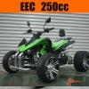 Road Legal Quads 250cc Atv