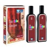 OEM Safe No Ammonia No Peroxide Hair Color ( Beauty Hair Shampoo)