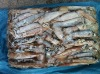 supply fresh frozen squid