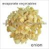 High quality Dried Onion