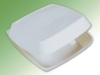 biodegradable disposable plastic takeout box