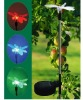 solar dragonfly light supplier from china