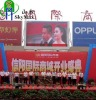 P20 Outdoor full color led advertising board