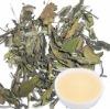 Organic White Tea,WHITE PEONY, more antioxidant polyphenols